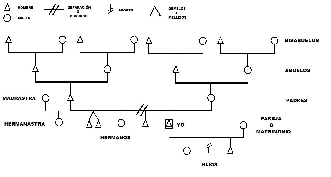 Bioneuroemoción - Como hacer Árbol Genealógico en Biodescodificación