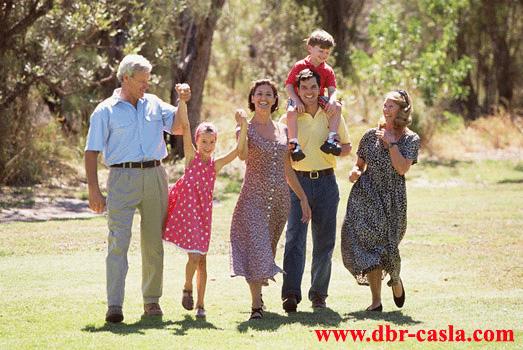 transmisión-transgeneracional árbol-genealógico descodificación-biológica